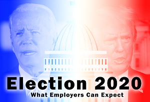 Election 2020 Infographic
